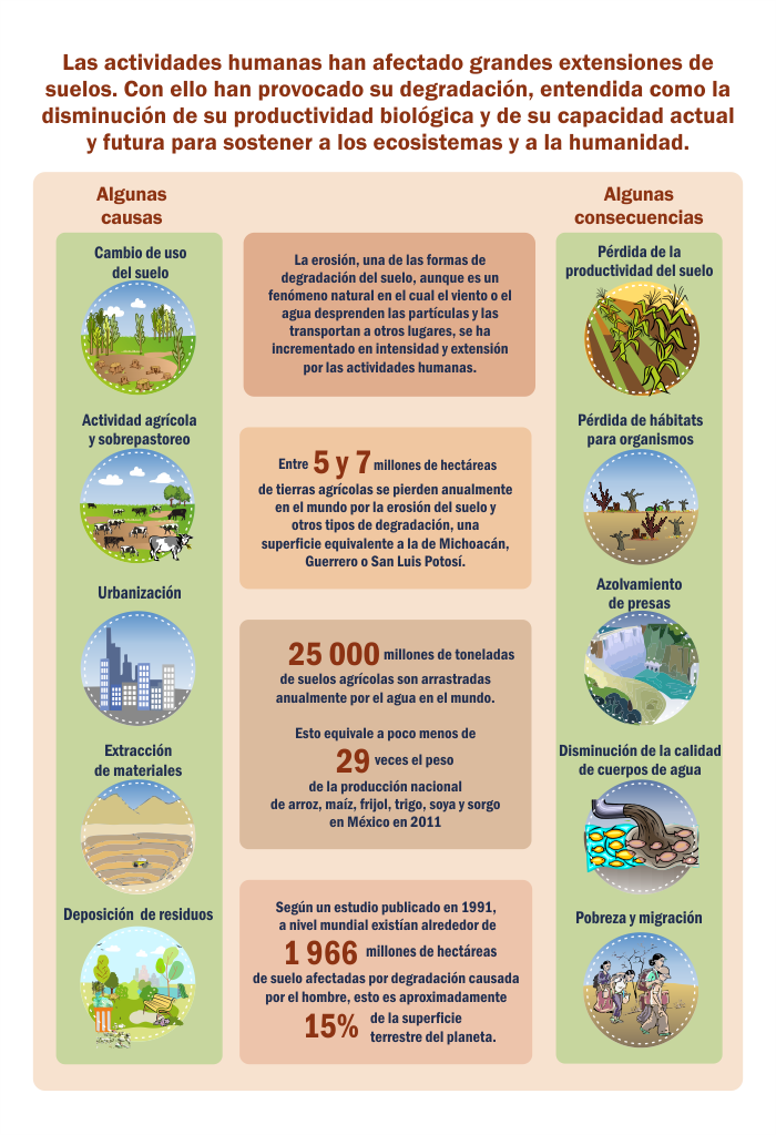 importancia cuidar suelos